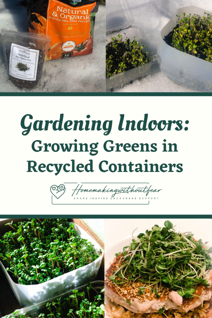 Gardening Indoors: Growing Greens in Recycled Containers