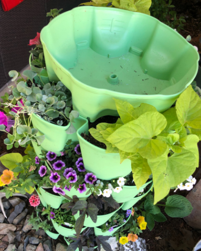Gardening in small spaces doesn't have to be discouraging or limiting. With 3 easy tips and lots of expert advice you too can grow a beautiful, thriving garden ANYWHERE!